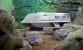 """Star Trek's Original """"Galileo"""" Shuttlecraft - Where Is It Today?"""